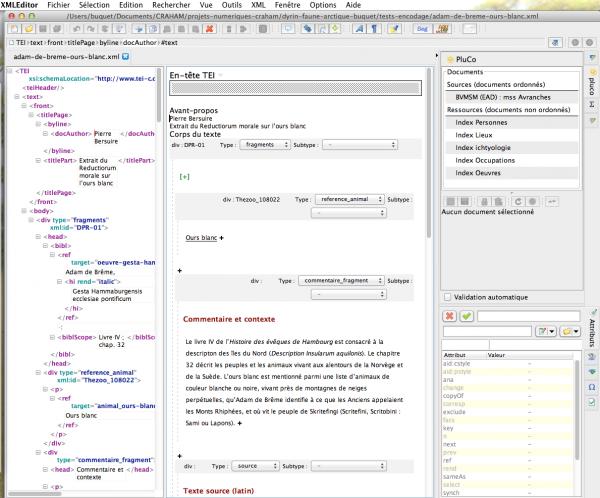 Formulaire d'encodage des sources textuelles dans XML editor
